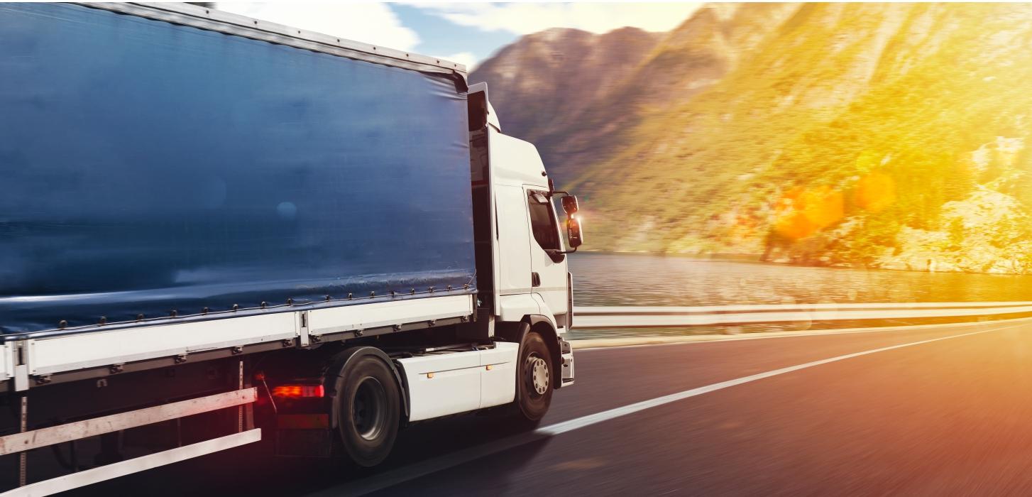 Soferi de camion in Italia